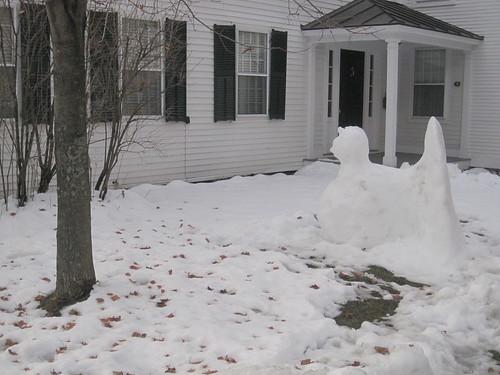Snow Turkey