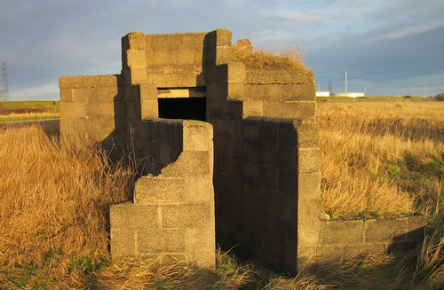 Mystery Structures, Greatham Creek