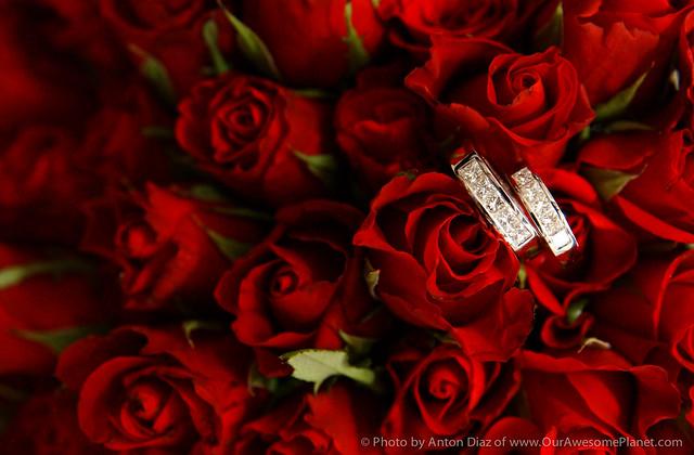 Caleruega Wedding-1.jpg