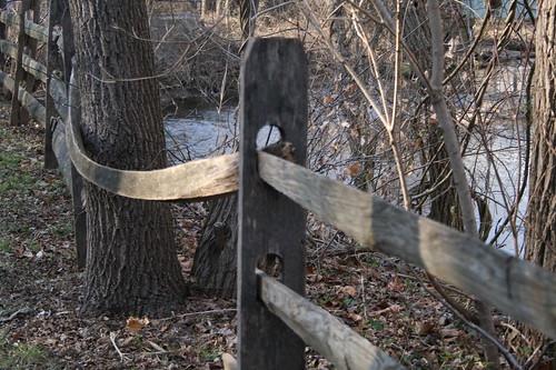 Bowed Fence