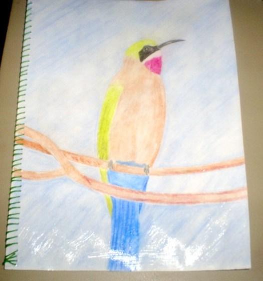My Hummingbird Card