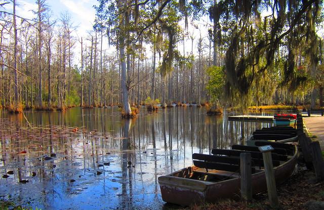 Swamp Boats