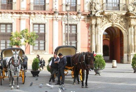 11k23 Sevilla_0169 variante baja