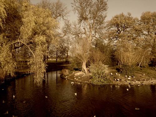 Regent's Park by jailsonrp