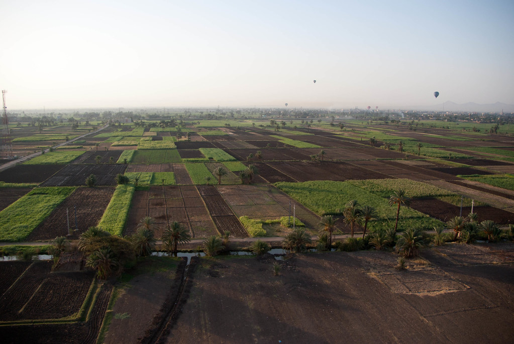 Aerial view of fields on west bank of Nile