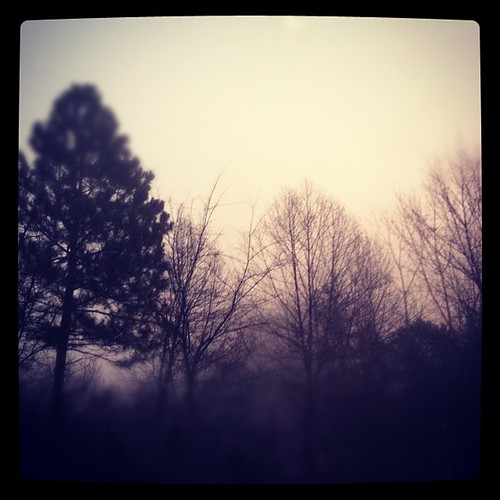 #iphoneography #instagramhub #instagood #justnow #morning #trees #fog #atlanta