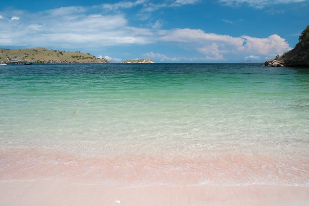 Pink Beach. Komodo Island