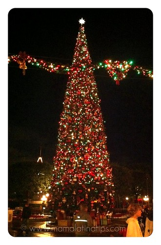 Disneylnd Park Christmas Tree