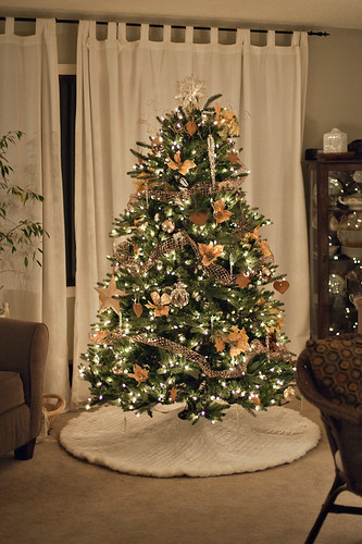 112611 Tree 001