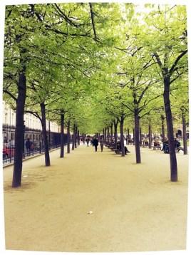 Spring time in Paris 2014