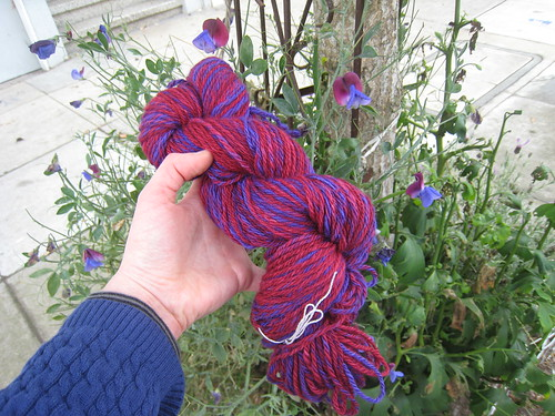 2011_10_Spinning_RoyalHare_purplered_sweetpea