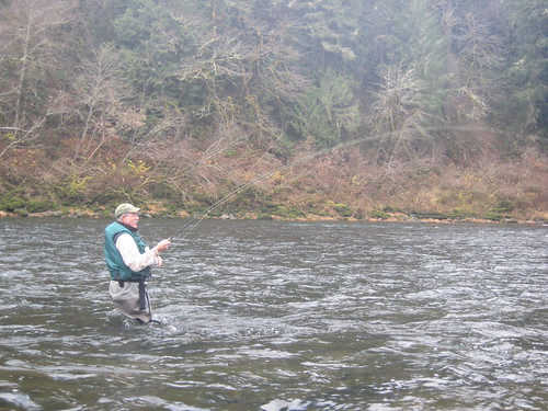 Wild Oregon Winter Steelhead