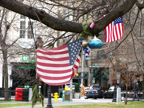 Occupy New Haven (Christmas Flags)