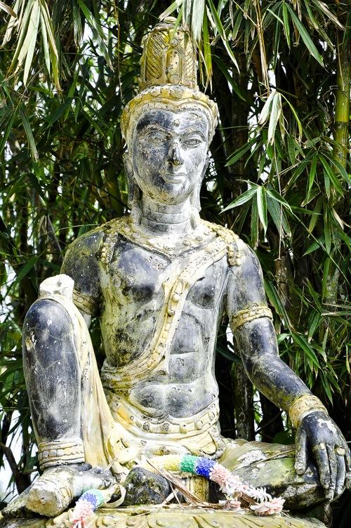 Magic Garden - Thailand, Koh Samui (40 of 42)