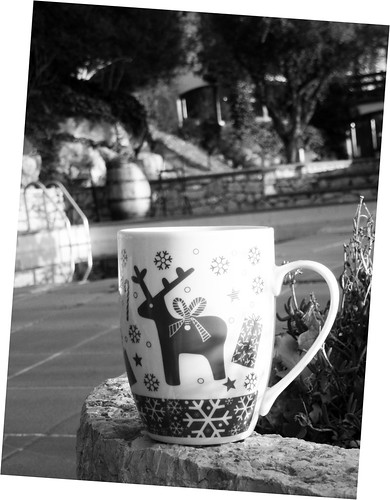 Tea cup in the garden
