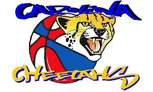 Carolina Cheetahs Logo