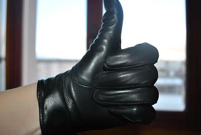 gant 8