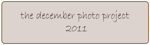 dpp2011 button