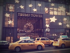sparkles and stars on 5th avenue