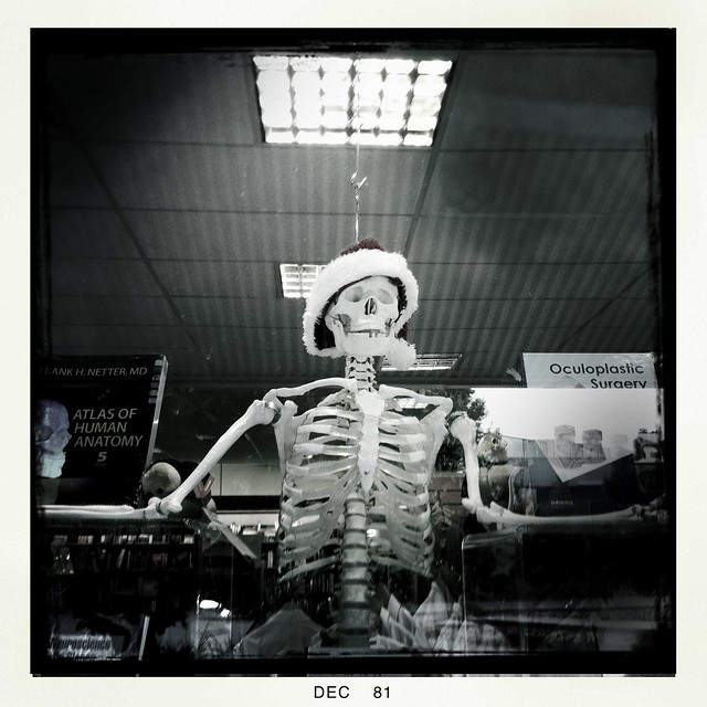 The university skeleton