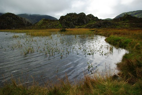 20110925-19_Innominate Tarn on Haystacks by gary.hadden