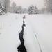 Trendwood Creek, February 04, 2012
