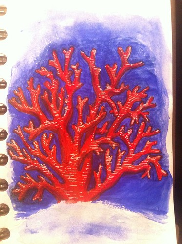 Day 34 - red coral