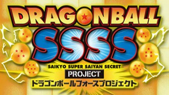 ssss_force_project
