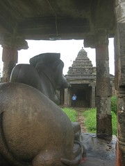 Nandhi in font of Kailasanathar shrine 4
