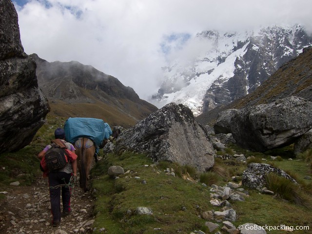Horses carry the food, gas and camping gear