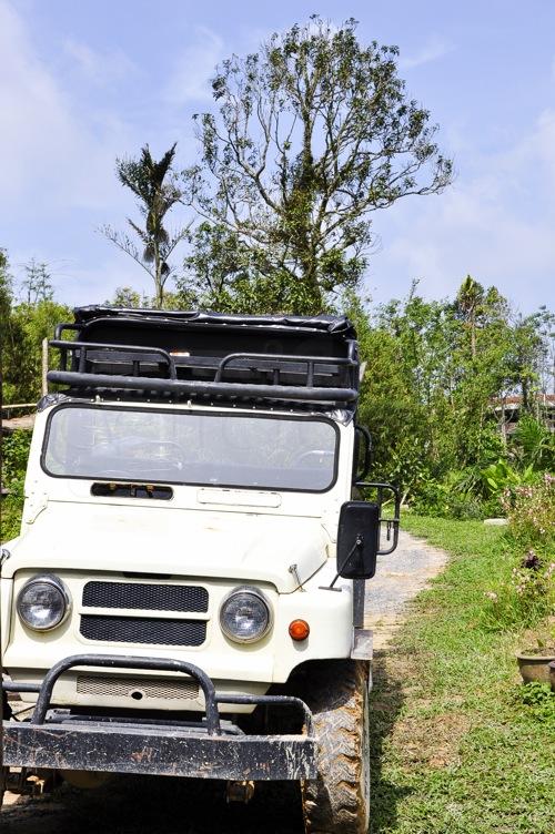 Magic Garden - Thailand, Koh Samui (27 of 42)