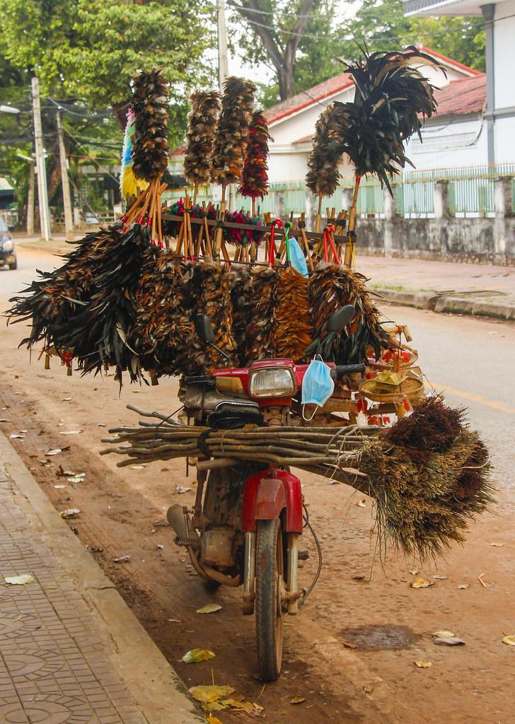 asiatiske scootere