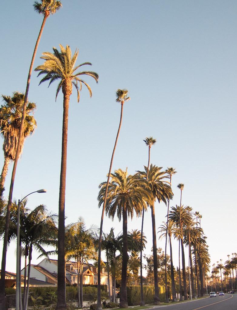 Sunset Blvd, Beverly Hills