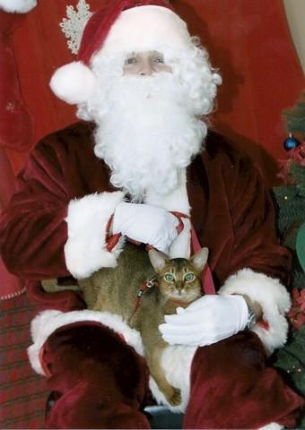 Finn With Santa0001