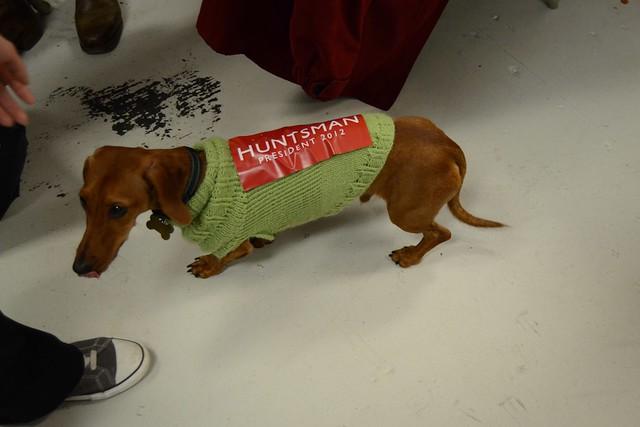 Huntsman campaign puppy - New Hampshire Primary