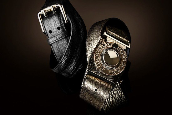 Autumn:Winter 2011 Accessories Collection (3)