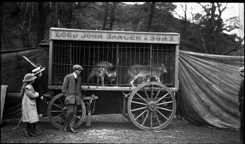 Caged canines, Lord John Sanger & Sons