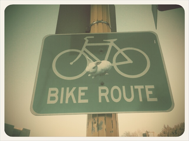 the bike sign at groveland and hennepin
