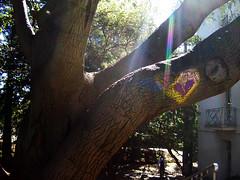 20080214 Happy Valentine's Day
