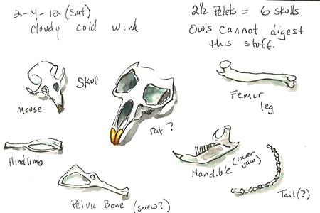 20120204_pellet_sketch2