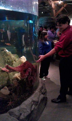 Aquarium Christmas Party