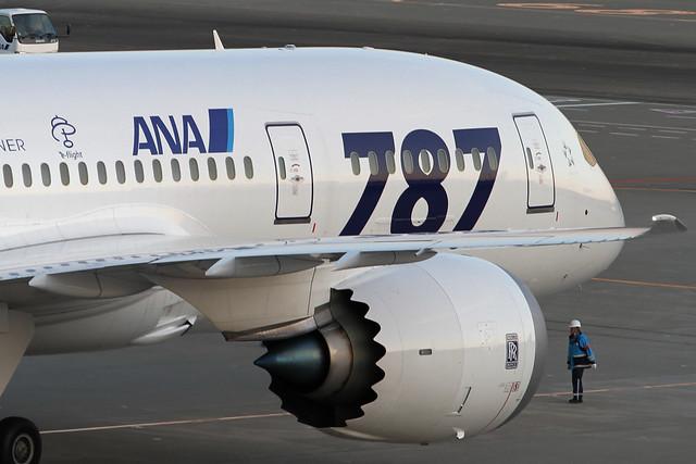 ANA B787-8(JA801A) Dreamliner