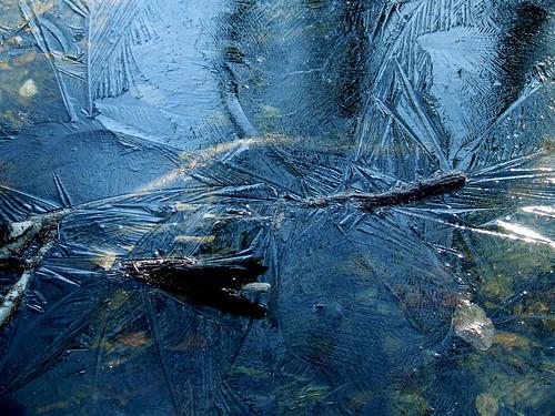 ice feathers