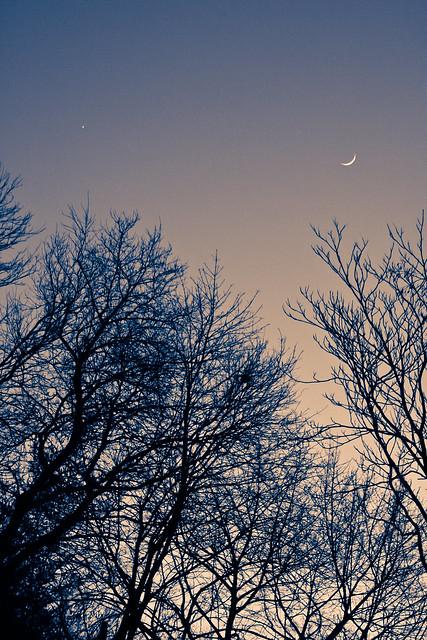 Fingernail Moon & Venus