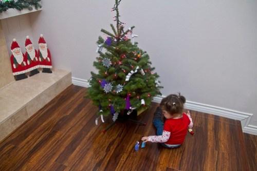 The Annie Tree