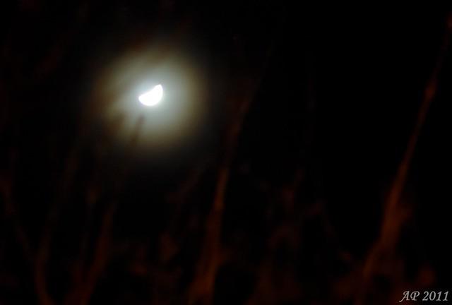 Lune fantôme / Spooky Moon