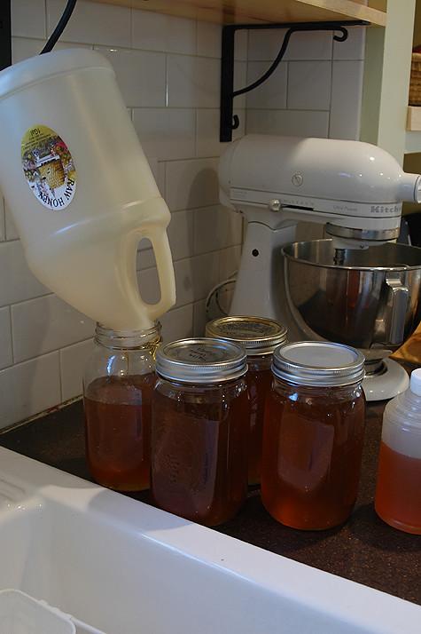 honey-jars