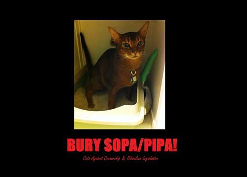 BurySOPA