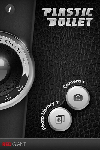 Camera Roll-293