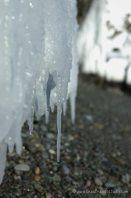 Sea icicles
